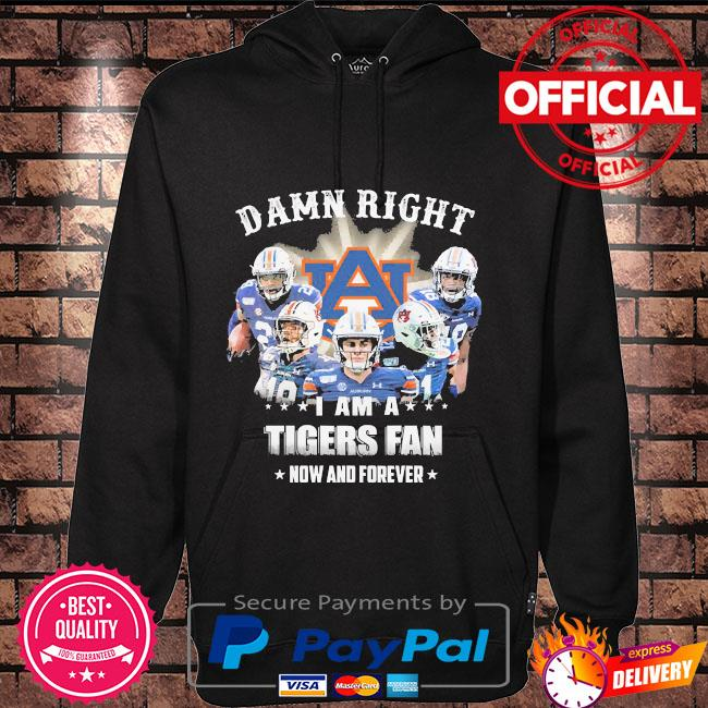 Damn right I am a Tigers fan now and forever Hoodie black