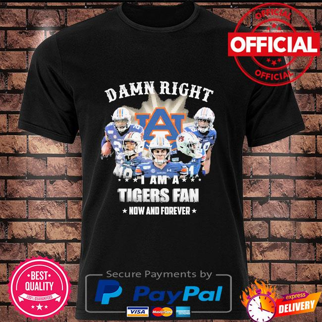 Damn right I am a Tigers fan now and forever shirt